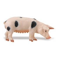 Safari Gloucester Sow Model Toy, Pig toy, Pig model, kids plastic Pig replica, wild safari animal