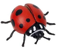 Hidden Kingdom Red Ladybug Toy Model - Bug Toys - Insect Toys