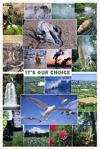 It's Our Choice Poster (Laminated)