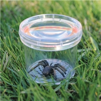 "GeoSafari® Large 3"" Bug Viewer"