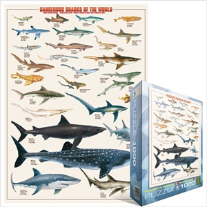 Dangerous Sharks of the World Puzzle
