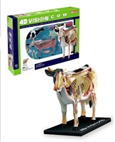 4D Vision Anatomy Model Kit, Animal Anatomy Models, Tedco Toys, 4D Vision