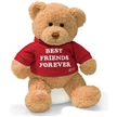 T-Shirt Bear - Best Friends Forever