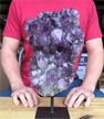 "Large Purple Druzy Cluster Amethyst on Metal Stand 12"" 9.6 lbs"