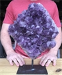 "Large Purple Druzy Cluster Amethyst on Metal Stand 13"" 11.6 lbs"