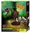 Geoworld Dinosaur Skeleton Excavation Kit - Velociraptor
