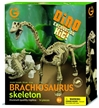 Geoworld Dinosaur Skeleton Excavation Kit - Brachiosaurus