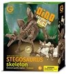 Geoworld Dinosaur Skeleton Excavation Kit - Stegosaurus