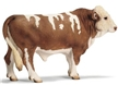 Schleich Simmental Bull Toy Model, bull toy, simmental bull model, simmental model,