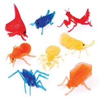 Transparent Insects - 12 pack