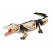 4D Vision Anatomy Model Kit - Crocodile