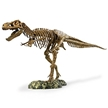 Elenco T-Rex Skeleton