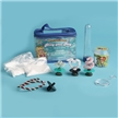 Bling Your Ring - Smarty Girl Science Kit