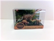 5 Piece Dinosaur Gift Set in Display Box - Set 3