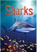 Sharks - Beginners Book