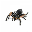 Orange-Kneed Tarantula Toy Model