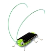 Frightened Grasshopper Solar Science Kit