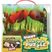 Ant Giant Life Cycle Puzzle