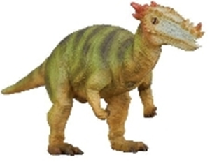 CollectA Dracorex Dinosaur Model