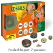Geoworld Fossils - Testimonies of The Past