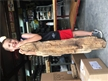 Petrified Wood Fossilized Tree Log Texas | 61 lbs 41.5 in. x 7 in.