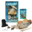 Excavate & Explore Sea Life Fossil Dig Kit