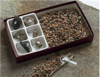 Fossil Hunt Kit, Excavation Kit, Fossil Kit, Excavation, Fossils, Hunt Fossils