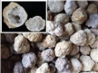 Bulk Pack - 25 Break Open Whole Moroccan Geodes - Crystal Centers 2