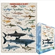 Dangerous Sharks Jigsaw Puzzle 1000 Pieces, shark puzzle, jigsaw puzzles, shark jigsaw puzzle,