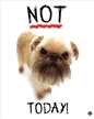 Not Today! Poster