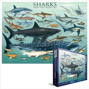 Sharks Puzzle