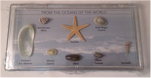 Ugly Box: From the Oceans of the World Collection Box