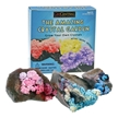 The Amazing Crystal Garden Growing Kit