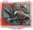 Coal To Go- Christmas Gag Gift