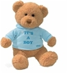 Gund Bear Hugs - It'S A Boy Bear