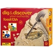GeoWorld Dig and Discover - Authentic Fossil Fish