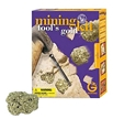 GeoWorld Mining Kit - Fool's Gold