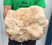 X-Large Whole Break Open Moroccan Geode 25.65 lbs 12""
