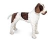 Melissa & Doug Large Stuffed German Shorthaired Pointer