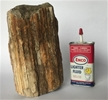 Petrified Wood Fossilized Tree Log 4.7 lbs Texas | 7 in. x 3.5 in.