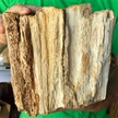 Petrified Wood Fossilized Tree Log 13.1 lbs Texas | 8 in. x 7 in.