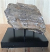 Petrified Wood Fossilized Tree Log on Metal Stand 3.2 lbs Texas | 4.5 in. x 4.5 in.