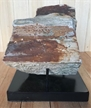 Petrified Wood Fossilized Tree Log on Metal Stand 4.12 lbs Texas | 5 in. x 5.75 in.