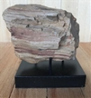 Petrified Wood Fossilized Tree Log on Metal Stand 2.4 lbs Texas | 4.5 in. x 3.5 in.