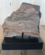Petrified Wood Fossilized Tree Log on Metal Stand 1.7 lbs Texas | 4 in. x 4 in.