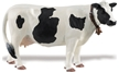 Wild Safari Barnyard Buddies - Holstein Cow