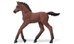 morgan foal, winner's circle morgan foal, foal toy, toy horse, foal model, morgan foal model, morgan