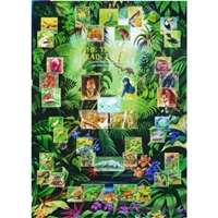 Tropical Rainforests Poster - climate poster - jungle poster
