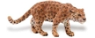 Wild Safari Wildlife Jaguar, Wildlife Jaguar, Safari Jaguar, Jaguar Toy, Jaguar Model, Safari Wildli