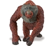 Wild Safari Wildlife Orangutan Male toy Model